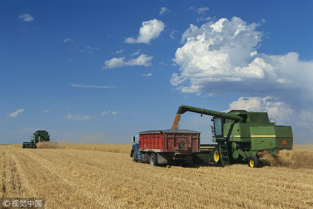 Us Wheat Farmers Say They Need Trade Agreements Chinadaily