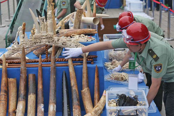 China continues strengthening ivory ban