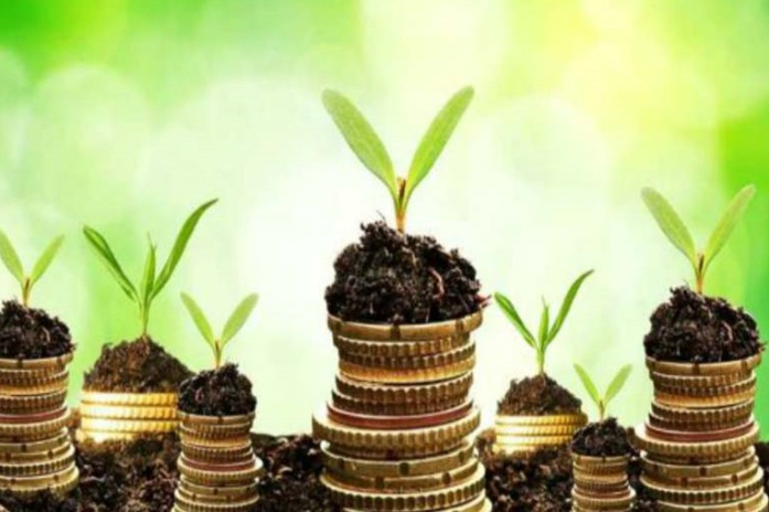 China emerges as key player in green bonds market
