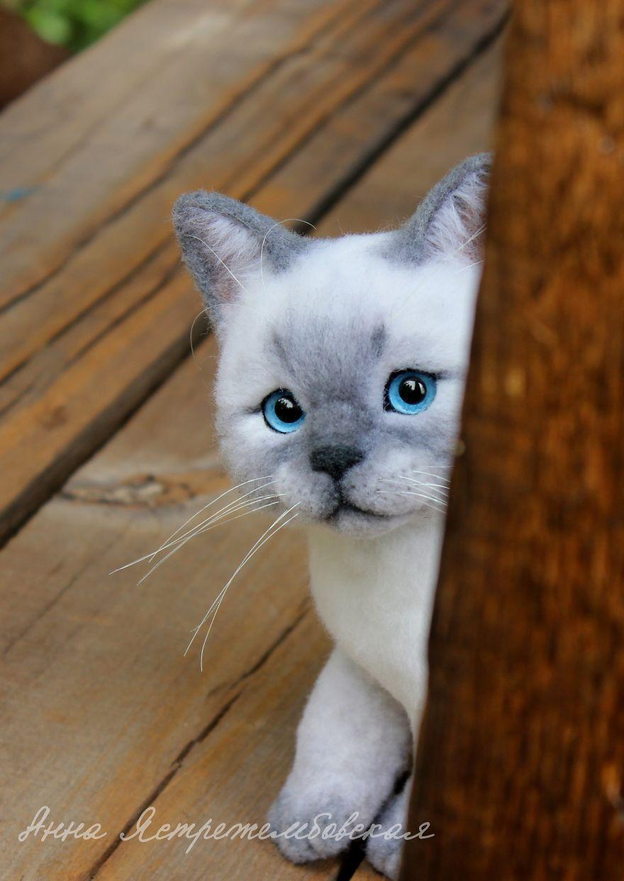 幼儿园小猫动物服饰diy