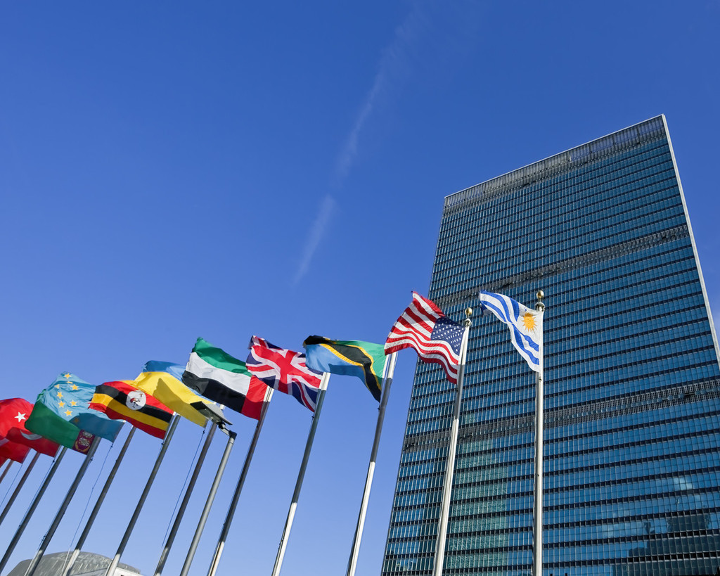 UN General Assembly elects 5 new Security Council members - World - Chinadaily.com.cn
