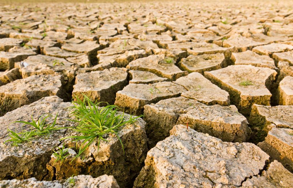 我国将持续加强对气候变化的治理