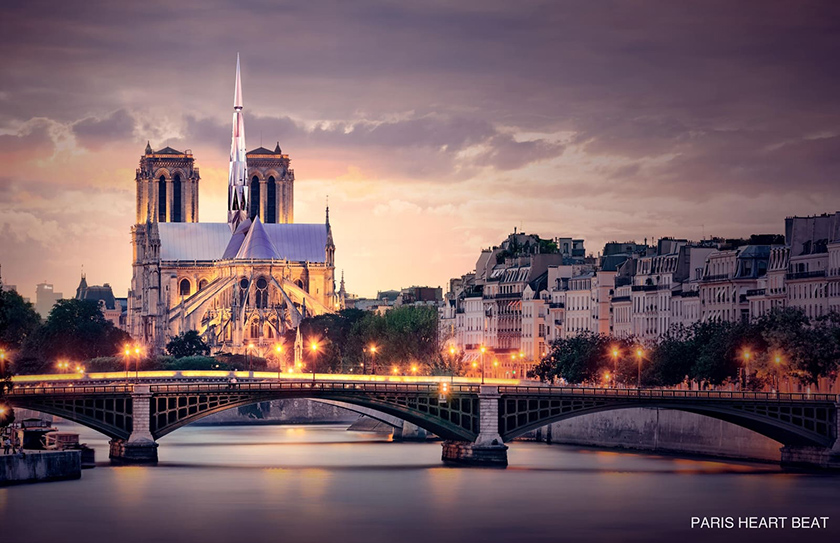 Chinese win design competition for rebuilding Notre Dame - Chinadaily.com.cn
