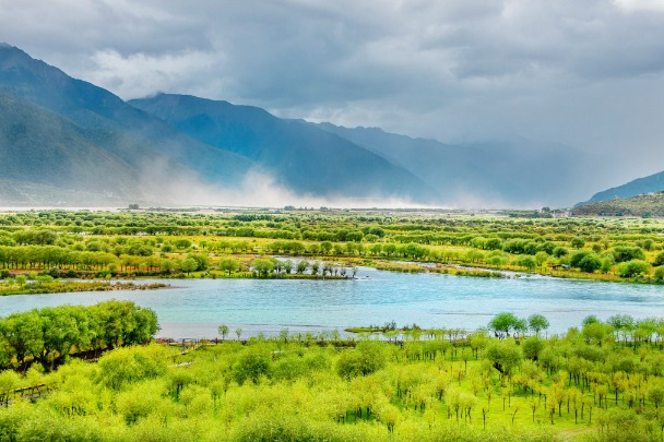China introduces assessment system to track ecological development - Chinadaily.com.cn