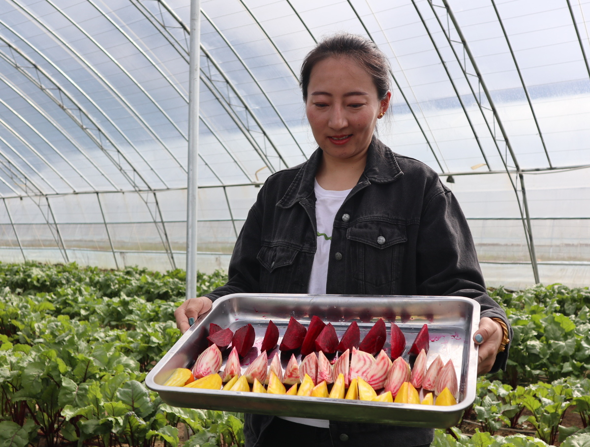 Agriculture Park Gives Villagers Skills and Income