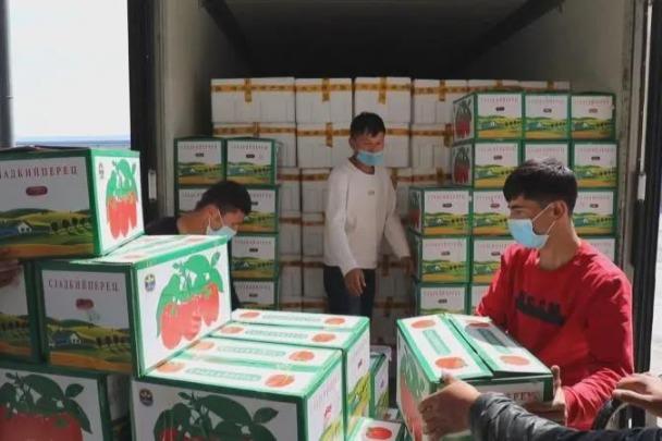 Xinjiang border port pushes efficiency