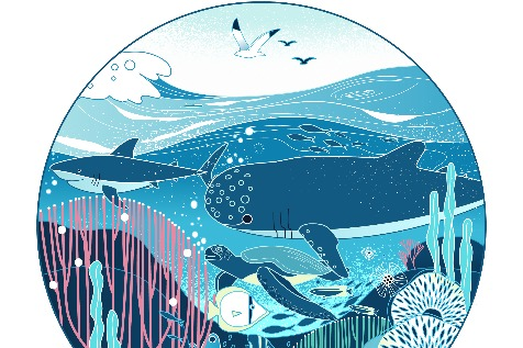 Time to ride the tide of blue ocean business