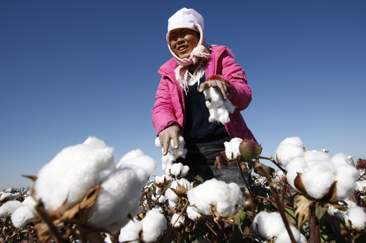 China to create own standards for cotton