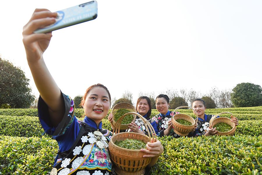 Rural E-Commerce Lifts Farming Sector