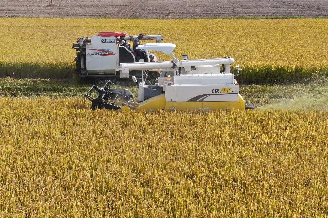 Big data helps build smarter agriculture