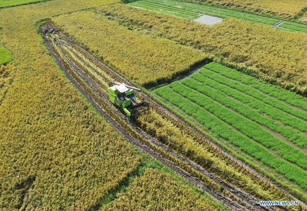 粮食种植面积升级改造耗资220亿元