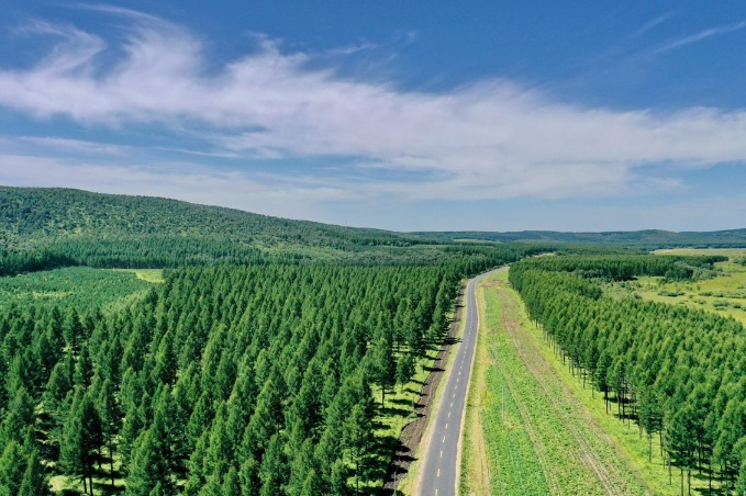 China's green path an inspiration