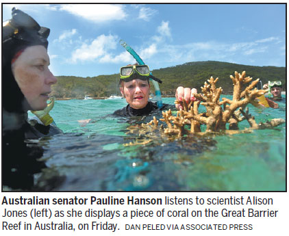 Coral transplant raises survival hopes