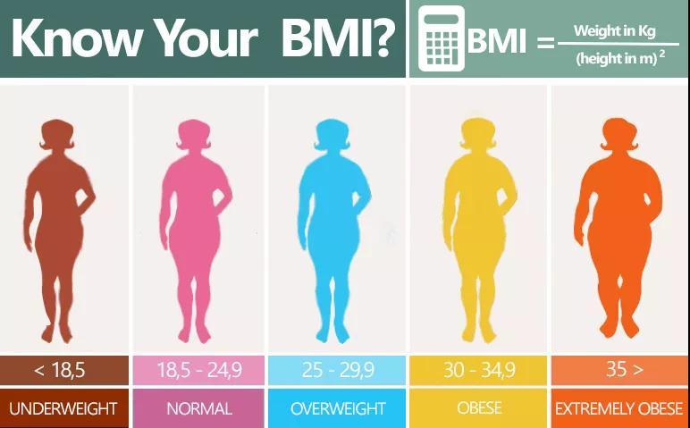 每逢佳节胖三斤!为什么你体重正常,肚子还是很大?