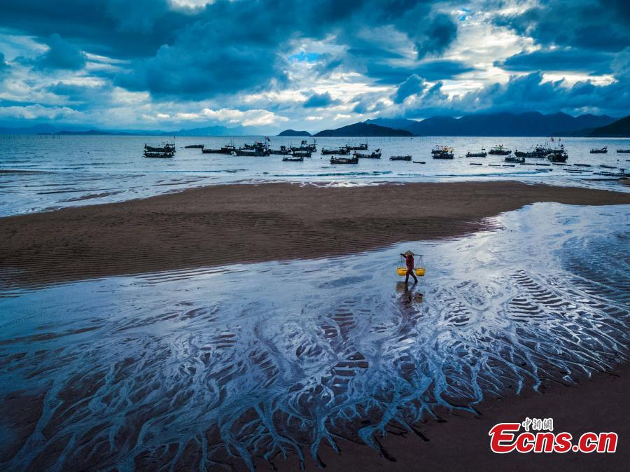 Xiapu, the most beautiful mudflats in China - Chinadaily.com.cn