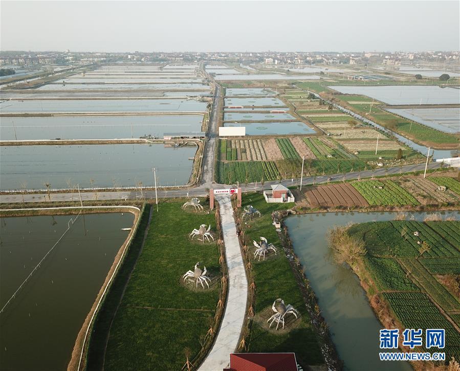 Demonstration Area in the Yangtze River Delta on Ecologically Friendly Development 长三角生态绿色一体化发展示范区 (chángsānjiǎo shēngtài lǜsè yītǐhuà fāzhǎn shìfànqū)