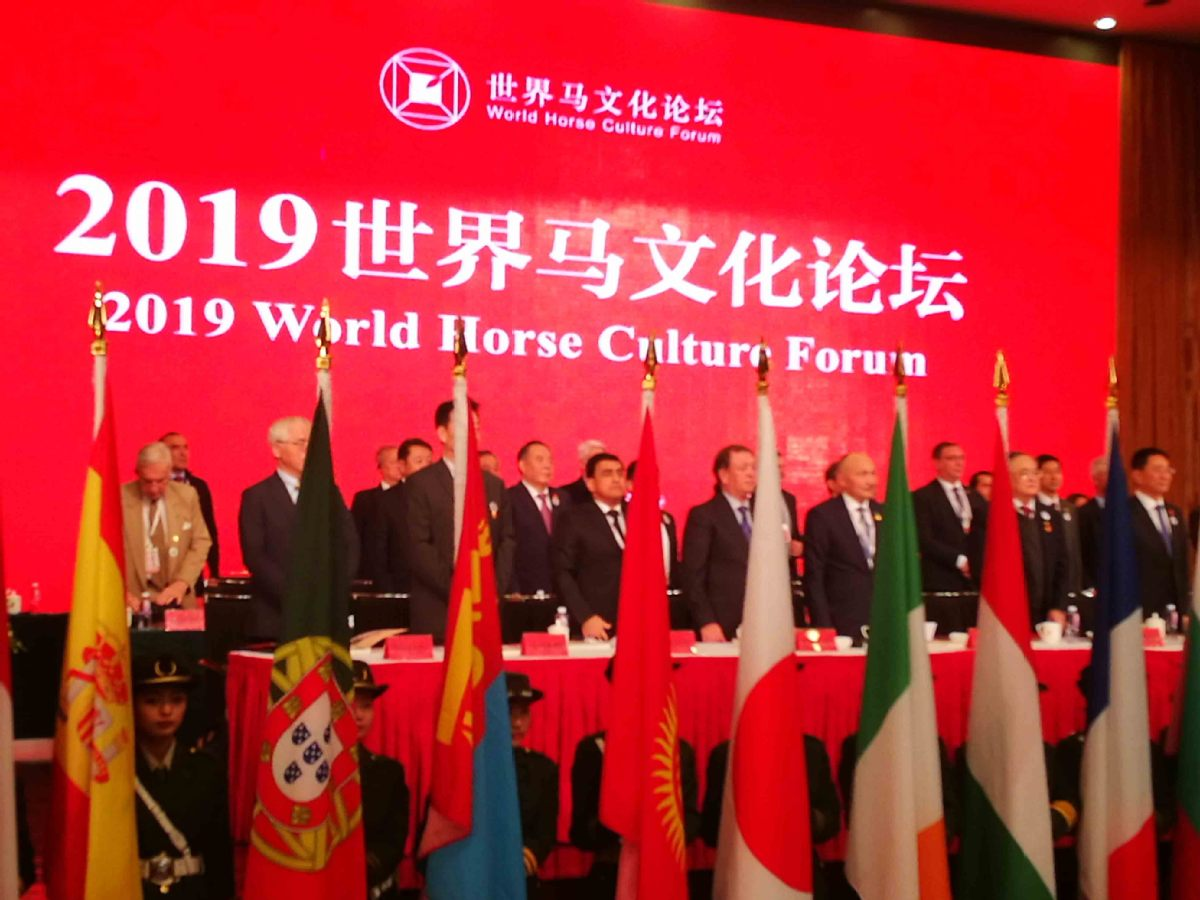 World Horse Culture Forum opens in Hohhot - Chinadaily.com.cn