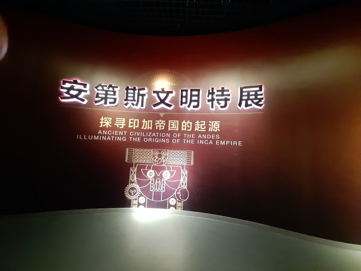 Tianjin online museums attract public interest