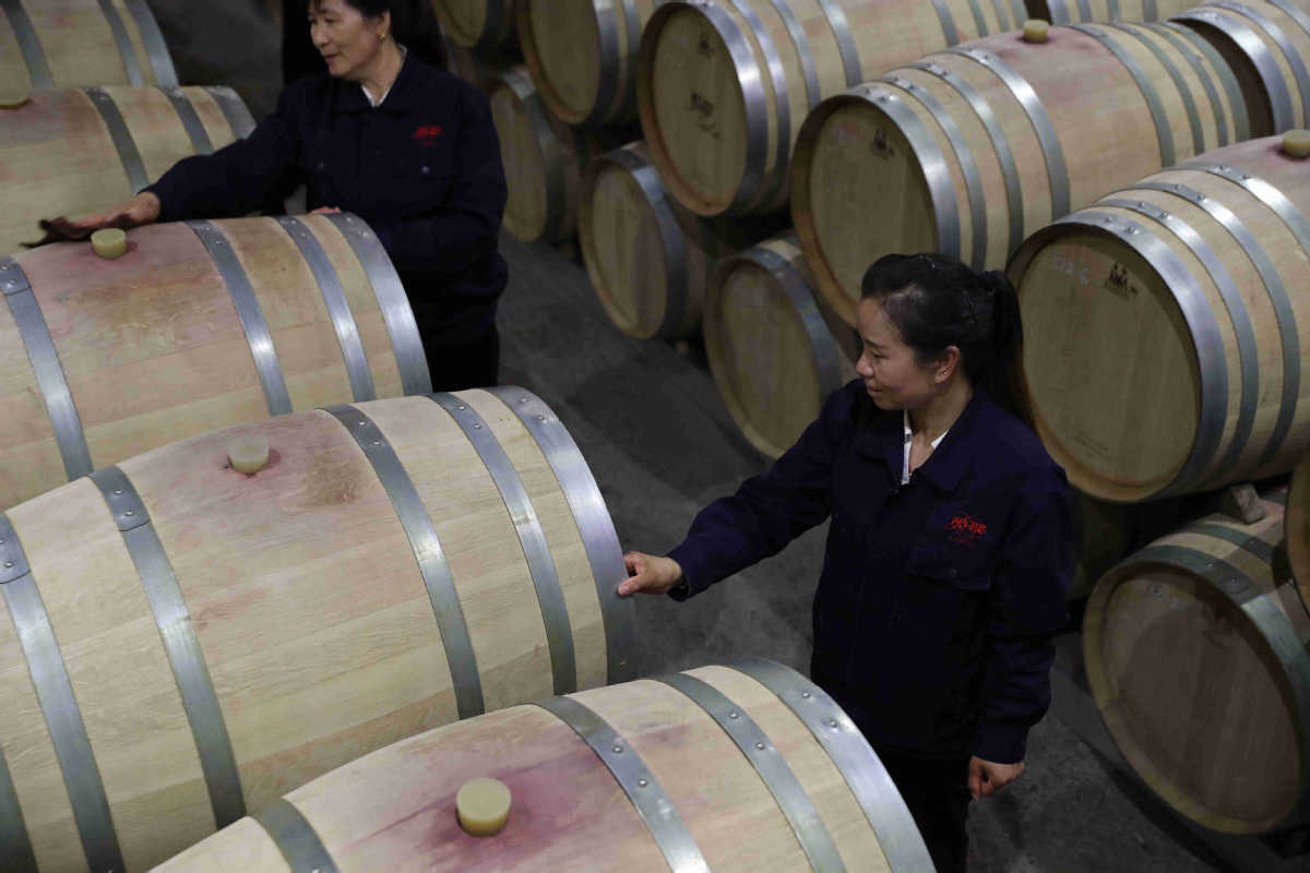 Ningxia's Wineries Brew up Vintage Success