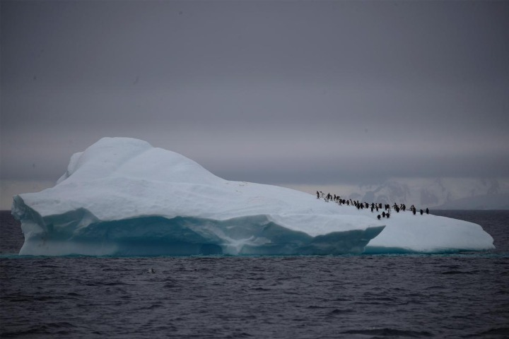 Antarctic ice melting faster, say scientists - Chinadaily.com.cn - Chinadaily USA