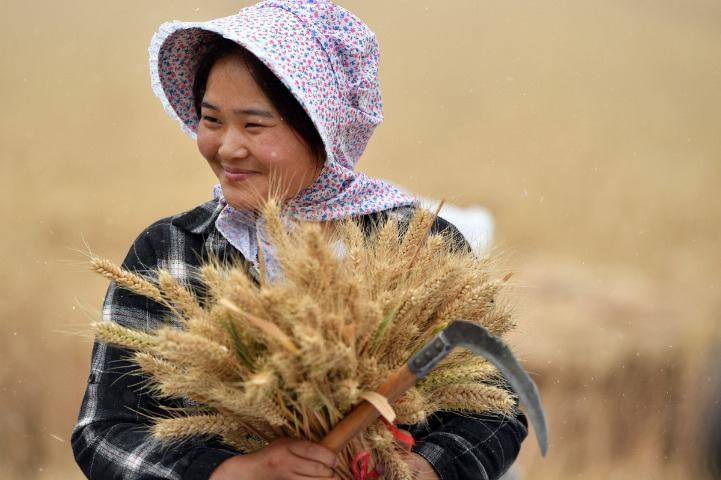 One-off subsidies for farmers to handle price hikes